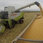 ETA GAUSTIER - Récolte maïs