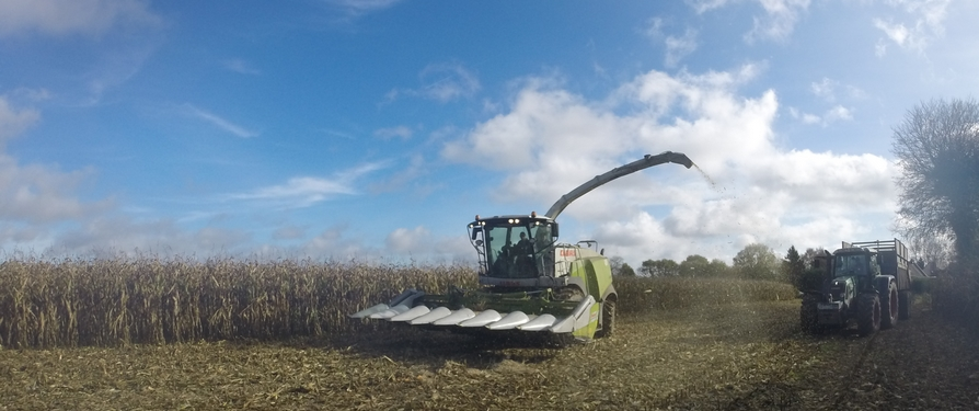 ETA GAUTIER - Ensilage maïs épi