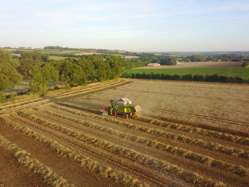 ETA Gautier - Récoltes 2017 - Claas Lexion 570 (3)